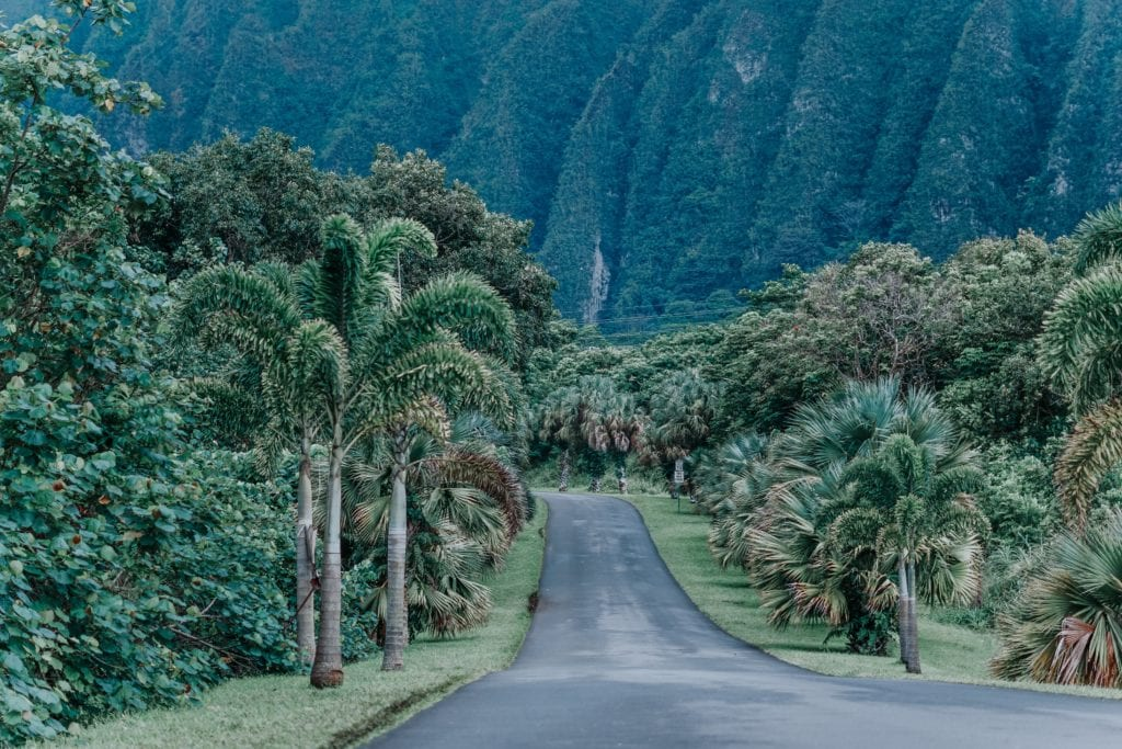 How To Ensure A Hawaii Travel Cheap Journey