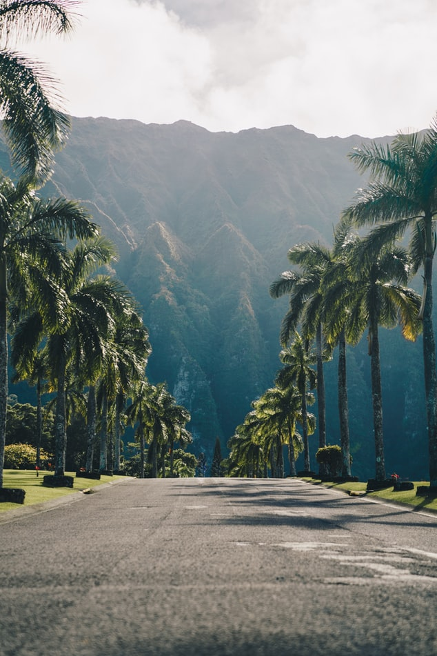 Hawaii Travel Restrictions: Things To Know