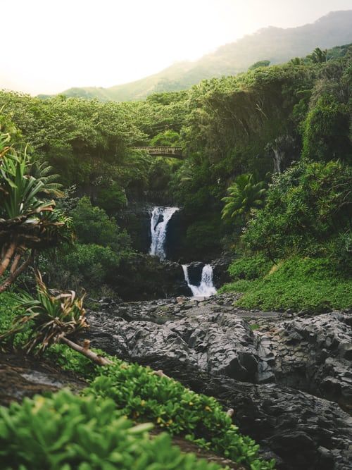 Hawaii Travel Planner Everything You Need To Know